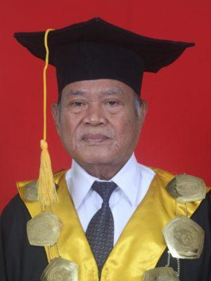 Prof. Dr. H. Muhaimin, MA
